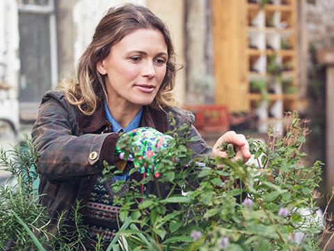 Eine Frau pflückt frische Kräuter aus ihrem eigenen Kräutergarten.
